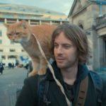 ボブという名の猫A Street Cat Named Bob(2017)